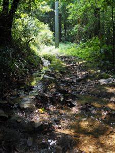 神前神社(皇大神宮 摂社)への小道