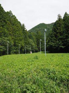 牧戸ふるさと農道から望む大日山