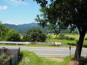 牧戸ふるさと農道の大日山登山口付近の風景(度会町牧戸)