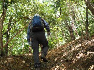 大日山登山口から大日山へ