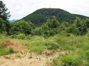 的山南峰から望む大日山