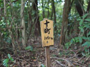 的山〜積良への分岐(玉城町)