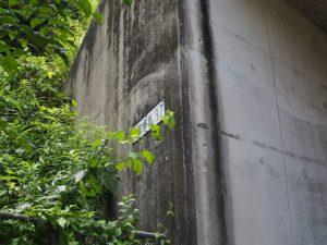 伊勢自動道下のトンネル「勢和多気37」