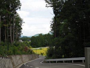 國束寺付近(度会町平生)