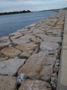 宮川の河岸に残された(石の入った)袋