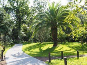 神宮美術館庭園