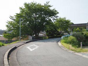 本誓寺前の坂道(伊勢市楠部町)