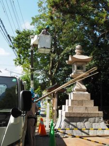 鳥居建て替えの前に植栽剪定、須原大社(伊勢市一之木)