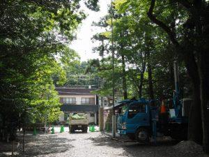 境内の植栽剪定、須原大社(伊勢市一之木)