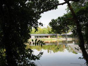 茜社の参道から望む勾玉池とせんぐう館の休憩舎
