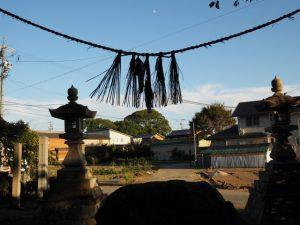 高向大社から望む宇須乃野神社の社叢(伊勢市御薗町高向)