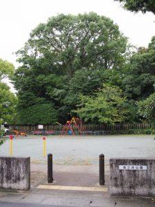 清之井公園から望む清野井庭神社(豊受大神宮 摂社)