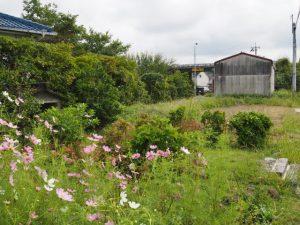 松原地蔵付近(伊勢市神田久志本町)
