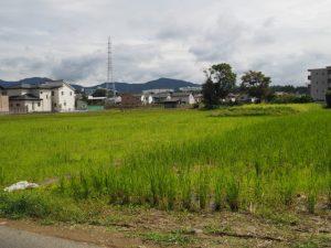 御塩道から望むお地蔵さん(伊勢市神田久志本町)