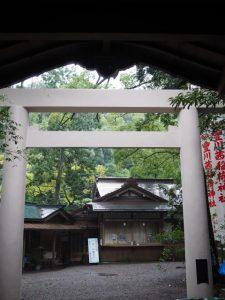 豊川茜稲荷神社の拝殿から望む社務所(茜社)