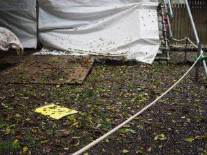 台風21号で飛ばされた「関係者以外立入禁止」の札(小社神社)