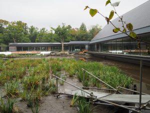 水が拔かれた勾玉池と休憩舎、台風21号の被害で休館中のせんぐう館