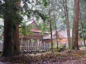 檜皮葺屋根の葺き替えを終えていた拝殿(丹生神社)