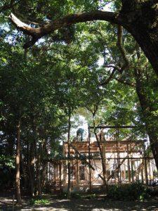 建ち上がった社務所の軸組、御薗神社(伊勢市御薗町王中島)