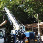建ち上がった社務所の軸組、御薗神社(伊勢市御薗町王中島