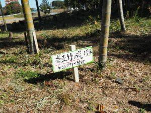 斎王参向古道ウォーク(斎王竹の道)