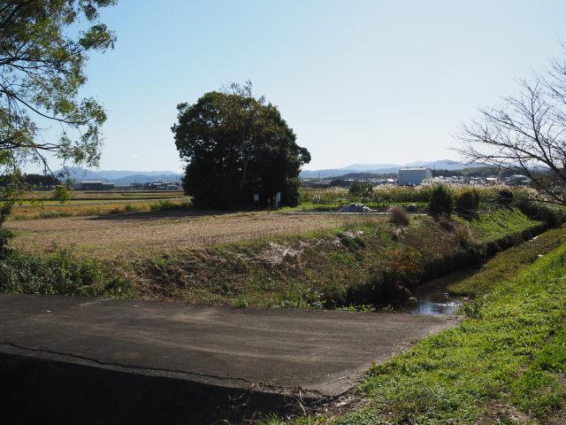 ひささ池の遠望(有弐神社跡付近)