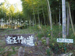 斎王竹の道