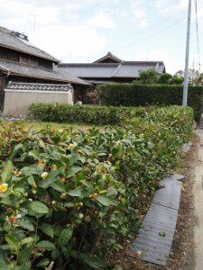 楽しく歩こう! 中万のまちを(松阪市中万町)