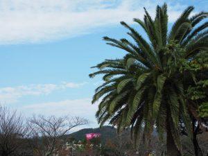 鳥羽市 市民の森公園