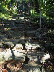 海に面した鳥居からの石段、伊射波神社(鳥羽市安楽島町)