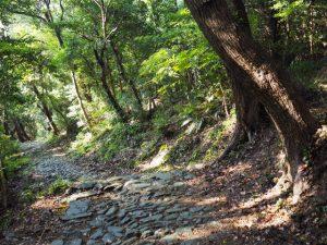 海に面した鳥居からの石畳、伊射波神社(鳥羽市安楽島町)