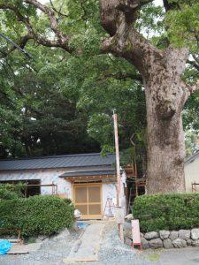 建て替え工事中の御薗神社(伊勢市御薗町王中島)