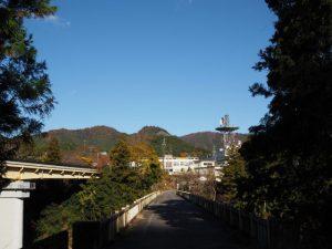 振り返って望む船木橋(宮川)