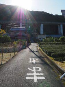 舩木神社への参道(度会郡大紀町船木)