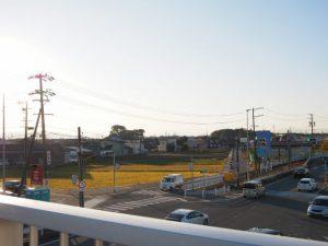 国道23号高向交差点歩道橋より遠望する宇須乃野神社および高向大社の社叢