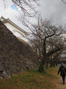 旧亀山城多門櫓の石垣