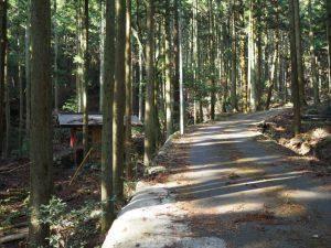 片山神社の参道(亀山市関町坂下)