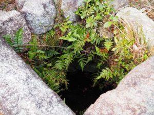 (19)鈴鹿峠-B 222 金蔵院の高い石垣 付近