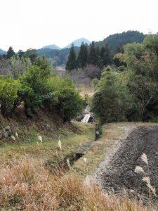 鈴鹿川に架かる丸太の橋(亀山市関町沓掛)