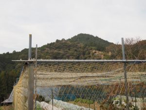 西部ルート 筆捨山 亀山市 バス停付近から望む筆捨山