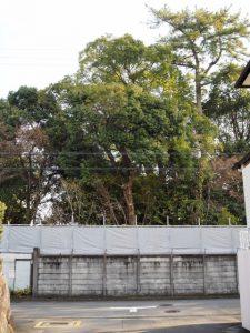 諸戸徳成邸(桑名市東方)