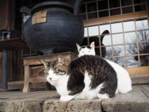 勧学寺(桑名市矢田)